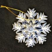 snowflake_IMG_1232.jpg